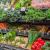 Bio-Shop-Noosaville-Sunshine-Coast-organic-produce.png