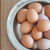 Indigo-Whispers-organic-eggs-delivered-melbourne.png