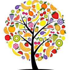 Varis-organics-logo.png