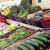 organic-fresh-produce-footscray-melbourne-home-delivery.png