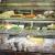 organic-salads-wraps-melbourne-city-habib-wholefoods.png
