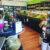 organic-shop-store-mansfield-victoria-1.jpg