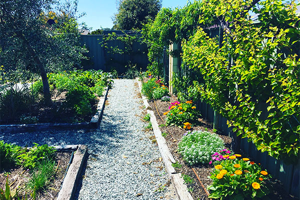 Gaias Organic Gardens Perth Installed Maintained Workshops Guide