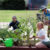 Gaias-organic-gardens-perth-growing-vegetables.jpg