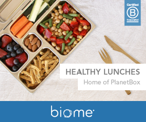 biome-eco-stores-healthy-lunchboxes-300x250